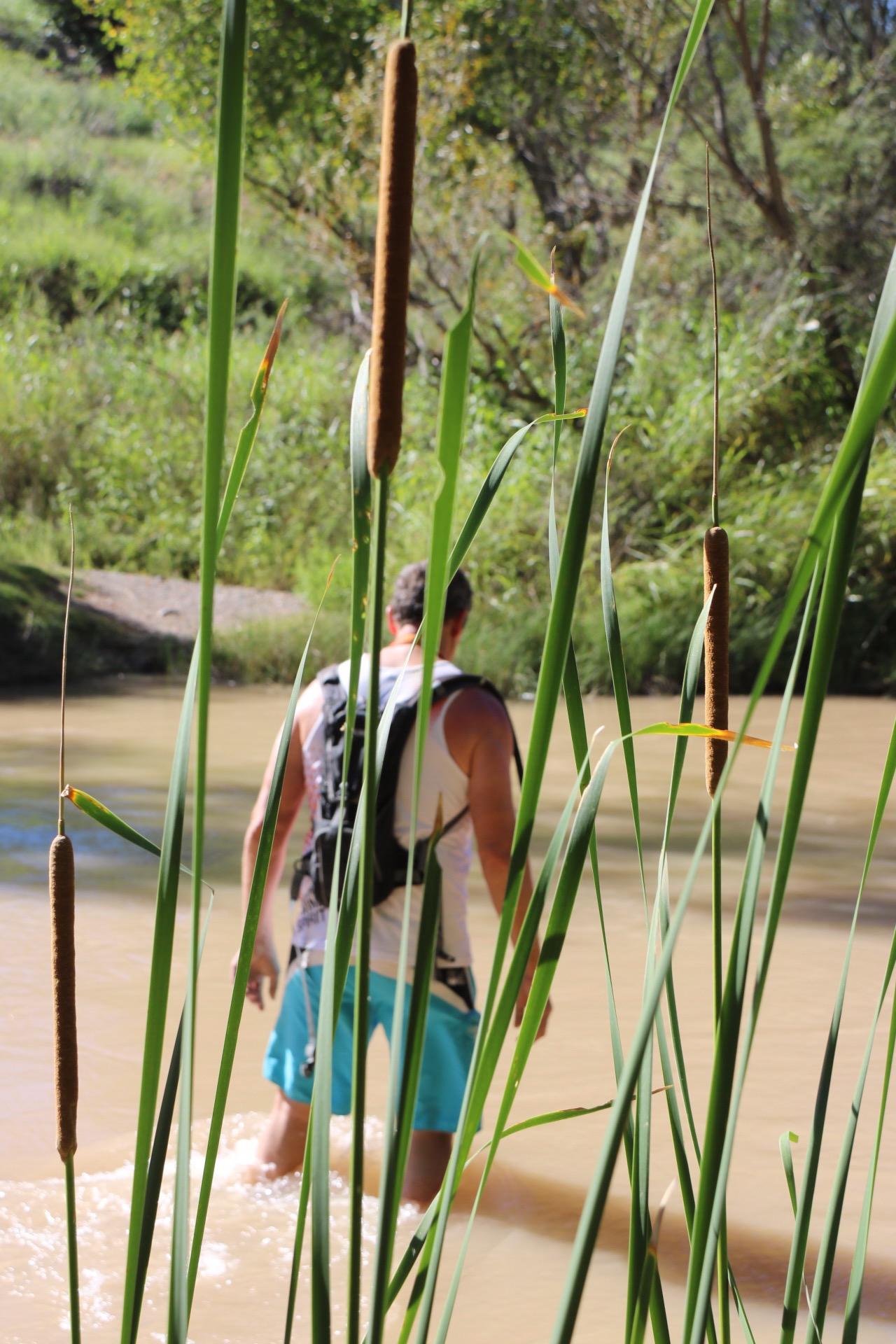 Verde River at Beasley Flat, Arizona